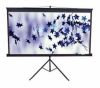 "Экран Elite Screens 120 ""(4: 3) 243,8Х182,9 BlackCase T120UWV1"